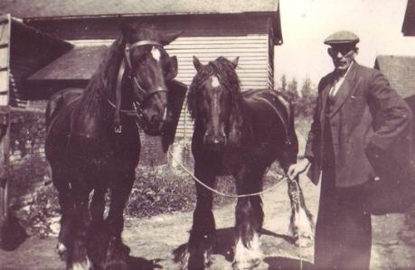 William Sparkes & horses